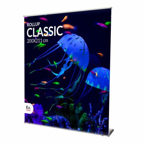 ROLLUP CLASSIC 200 PRINC 1 500x500 - ROLLUP PREMIUM 60x214 cm